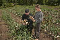 Jvk_and_kids_harvest_2